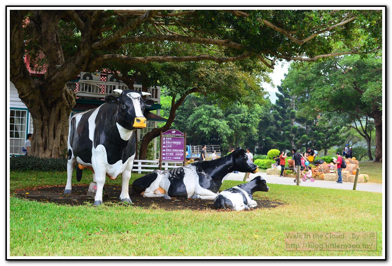 飛牛牧場廣場 - 乳牛模型