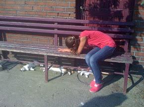 Franzi schmust mit den Kätzchen.