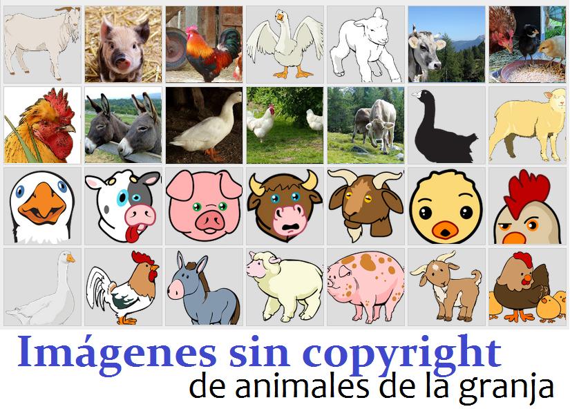 Animales De Granja Imagenes