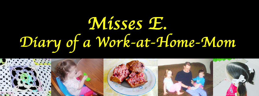 Diary of a Work-at-Home-Mom