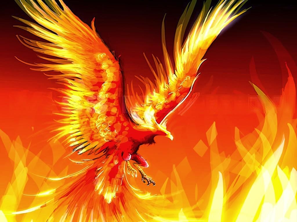 http://4.bp.blogspot.com/-PpVHT_IGQVI/UstZNoOsgnI/AAAAAAAADM8/nsMD9o4Gm4Y/s1600/The-Fire-Phoenix.jpg