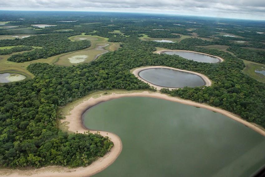 Região do Pantanal no Mato Grosso do Sul