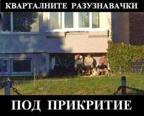 КГБ, ФБР, ЦРУ и всички съкращения нямат сила в квартала. Бабите са на пост 24/7 Смях - смешни gifs картинки и снимки с надписи, забавни клипчета и яки демотиватори