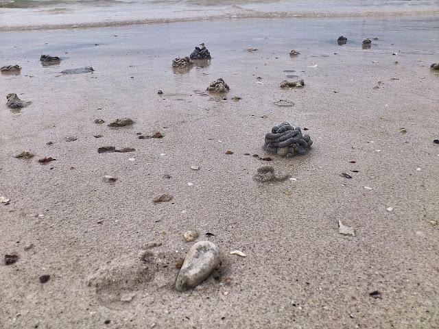 Песочные кренделя на островах Таиланда