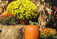 Autumn Yard Decorations3