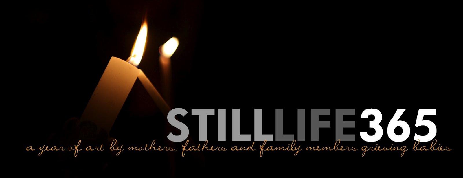 still life 365