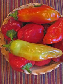 chili peppers in a bowl photo
