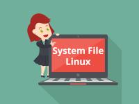 Mengenal Sistem File (File System) Pada Sistem Operasi Linux