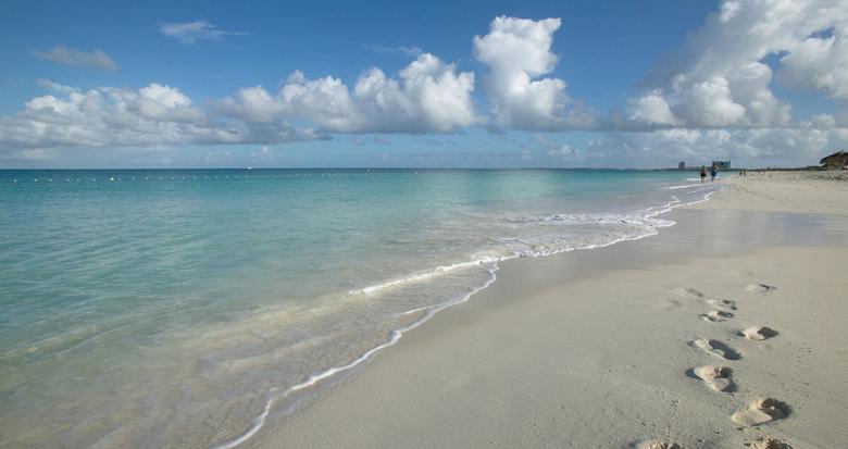 Aruba.com Beaches Peaches and Bear Travel Blog