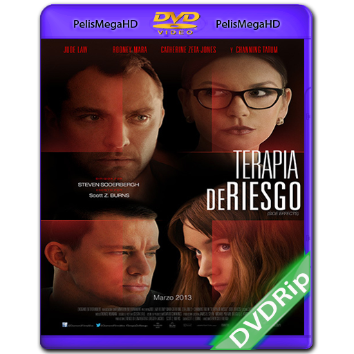 TERAPIA DE RIESGO (2013) DVDRIP ESPAÑOL LATINO
