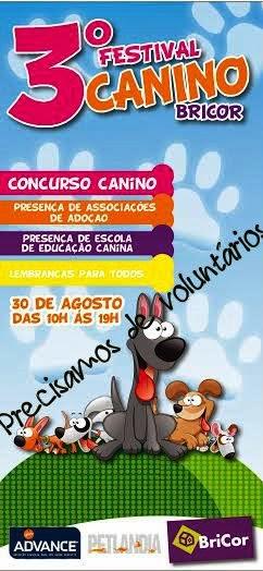 3º Festival Canino BRICOR, no Complexo Nassica - Vila do Conde