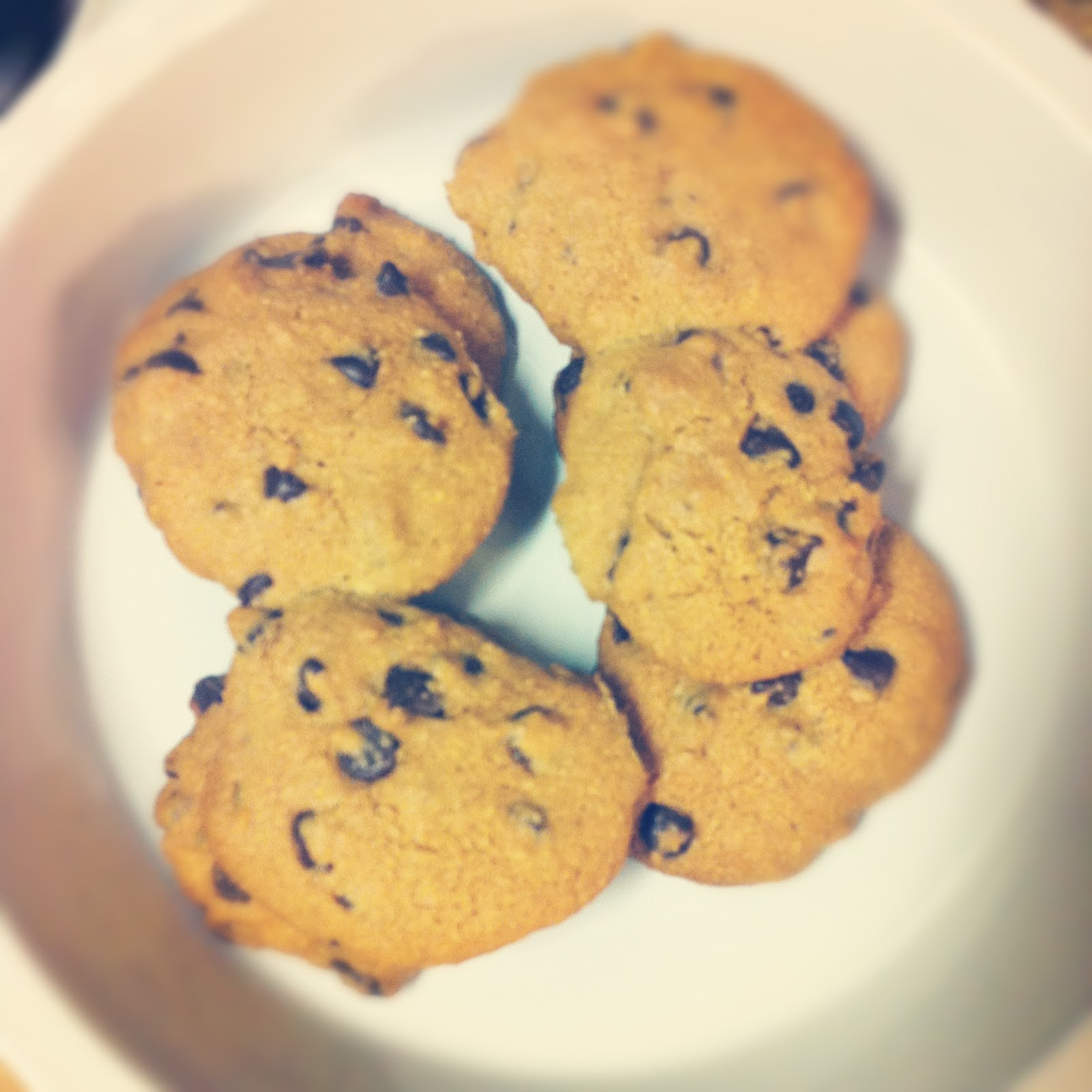 ... after going paleo i made these delicious paleo chocolate chip cookies