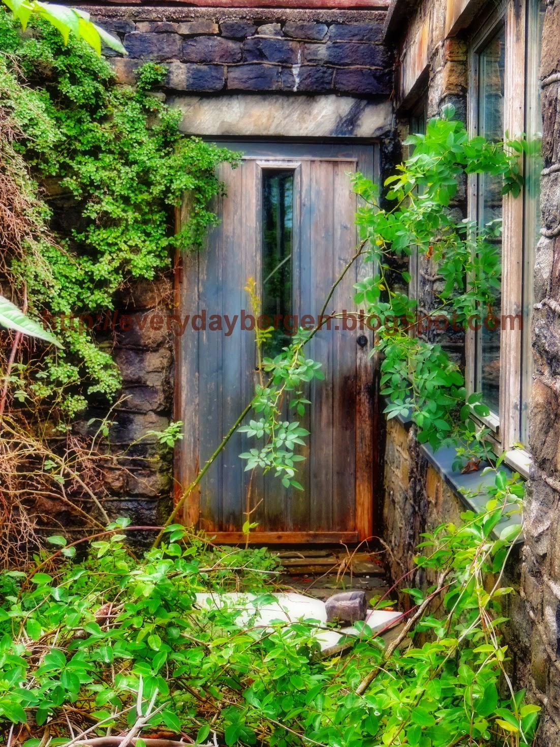 Abandoned Doors