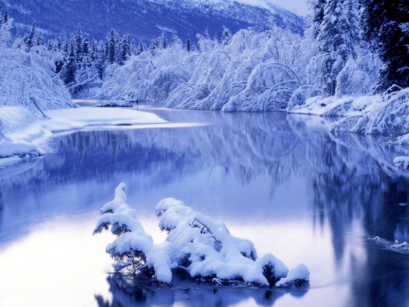http://4.bp.blogspot.com/-PrCv_Wwk-60/Tu9Dnin3e8I/AAAAAAAAAQg/7BY5ZqCzVpE/s1600/winter-nature-landscape-wallpaper_2560x1920_87776.jpg