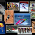 Sponsored Athletes Extreme Sports to Reach Gen Y (3)
