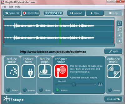 iZotope Music and Speech Cleaner