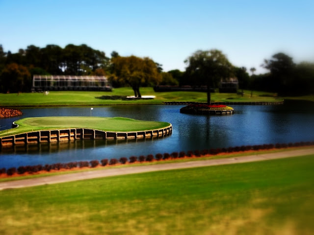 Amc Grand Island 7 >> The 17th Hole at TPC Sawgrass - Picture of the Week ~ The World of Deej