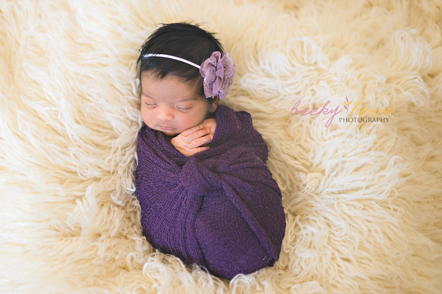 newborn photography newborn girl wrapped purple sleeping flokati