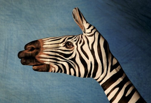 Guido Daniele. Handimals & bodypainting