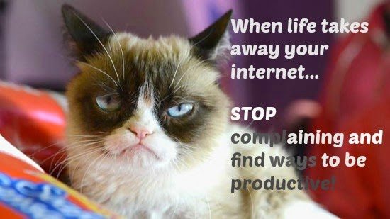 grumpy cat no internet dont complain offline applications - mutsuz kedi - offline uygulamalar