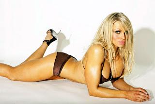 WWE Aksana Hot