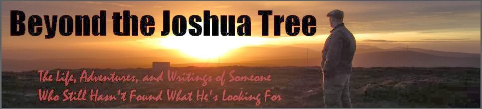 Beyond the Joshua Tree