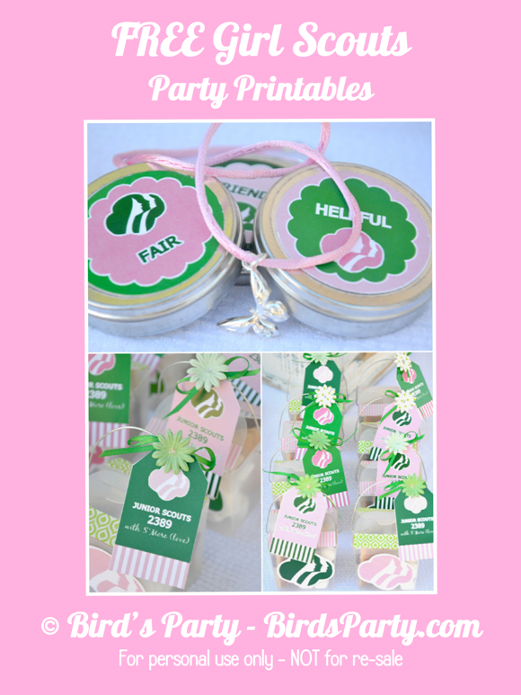 Crissy's Crafts: Girl Scouts Investiture Ceremony