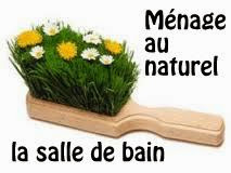 http://www.petitesastucesentrefilles.com/2014/04/menage-au-naturel-la-salle-de-bain.html