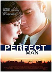 Baixe imagem de Um Homem Perfeito (Dual Audio) sem Torrent