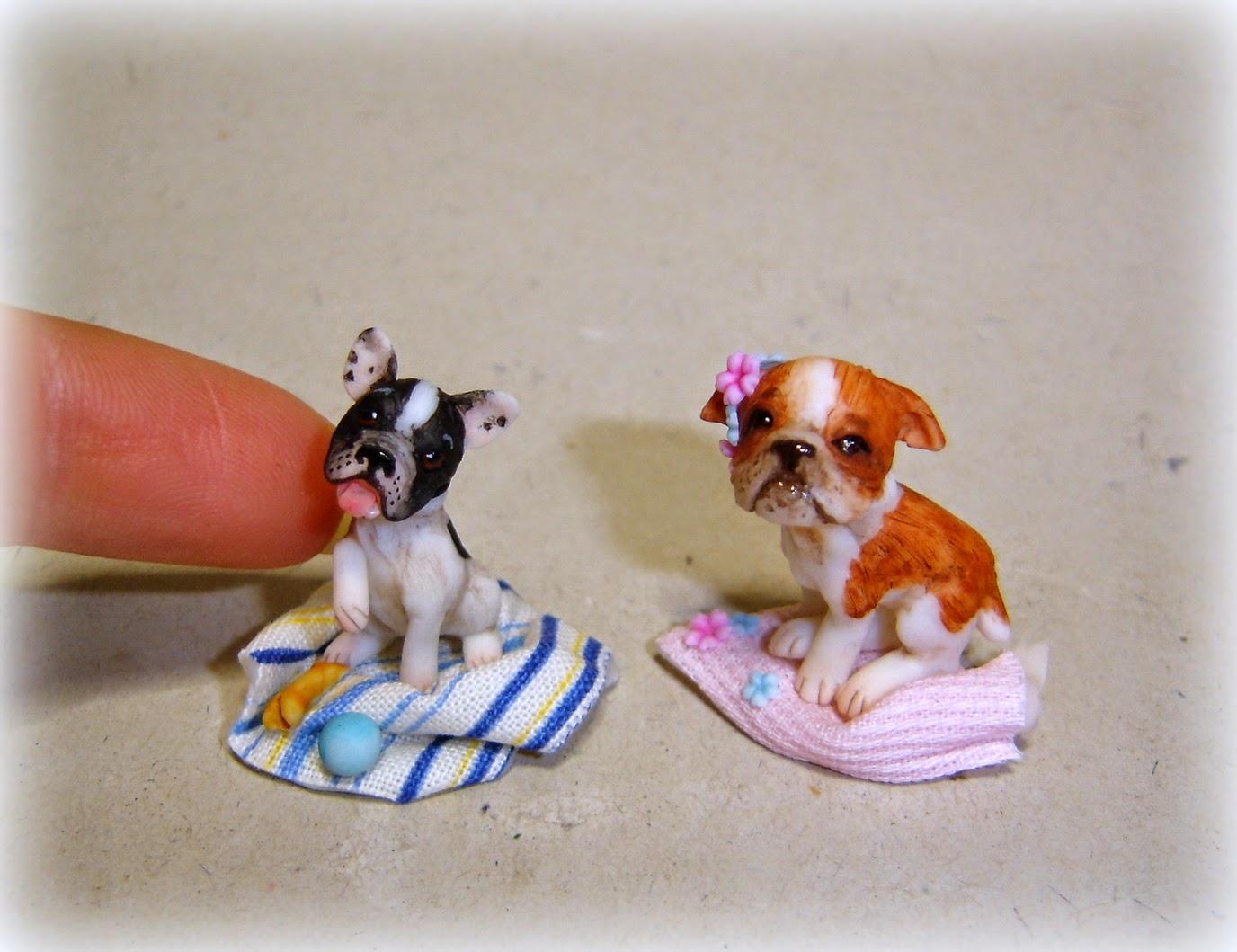 Bulldog in miniatura - Togliere silicone dalle piastrelle ...
