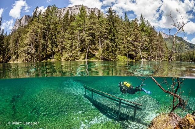 Setiap Musim Bunga Taman Ini Ditenggelami Air Mewujudkan Pengalaman Bawah Air Yang Sangat Menakjubkan