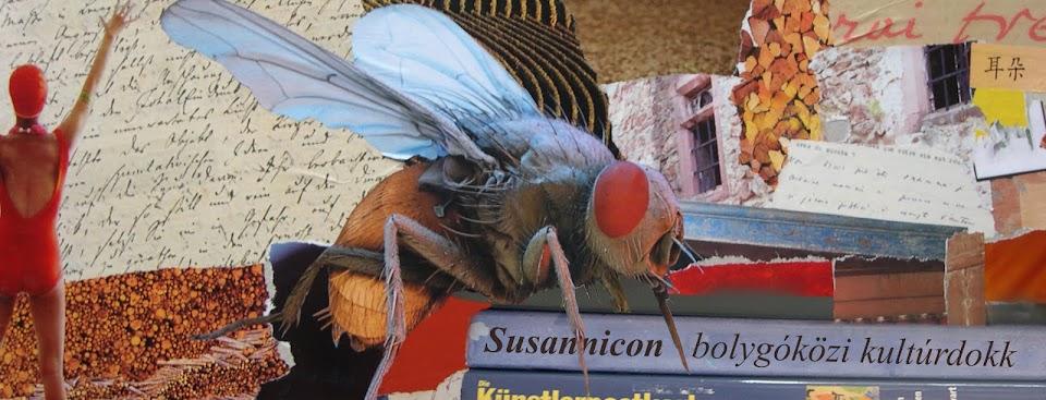 Susannicon
