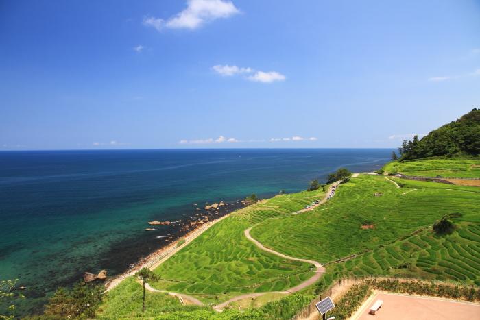 能登半島(石川県)の代表的な畑...千枚田. Japan's most beautiful rice terrace on Noto peninsula, Ishikawa Prefecture.