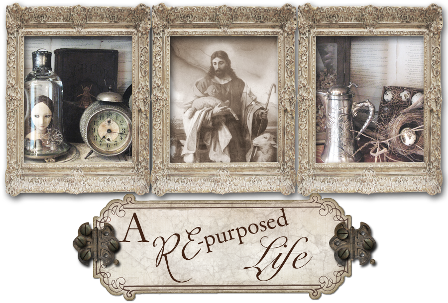 A Re-Purposed Life