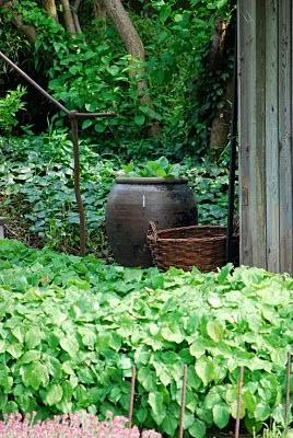 herb garden test