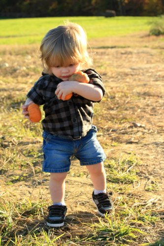 The gourd cropper