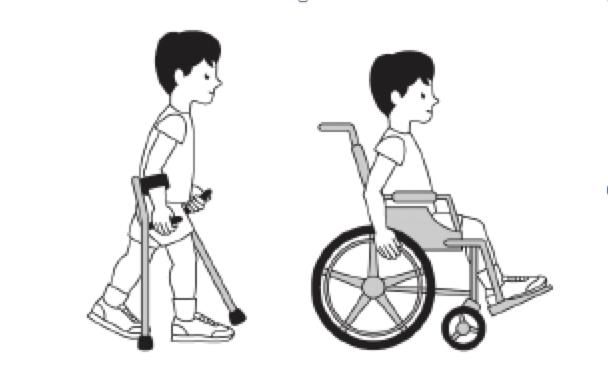 La Discapacidad La Discapacidad F Sica