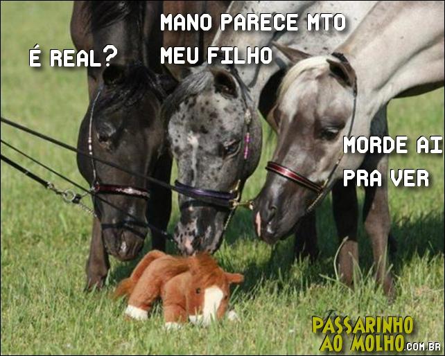 cavalo, cavalo de pelúcia