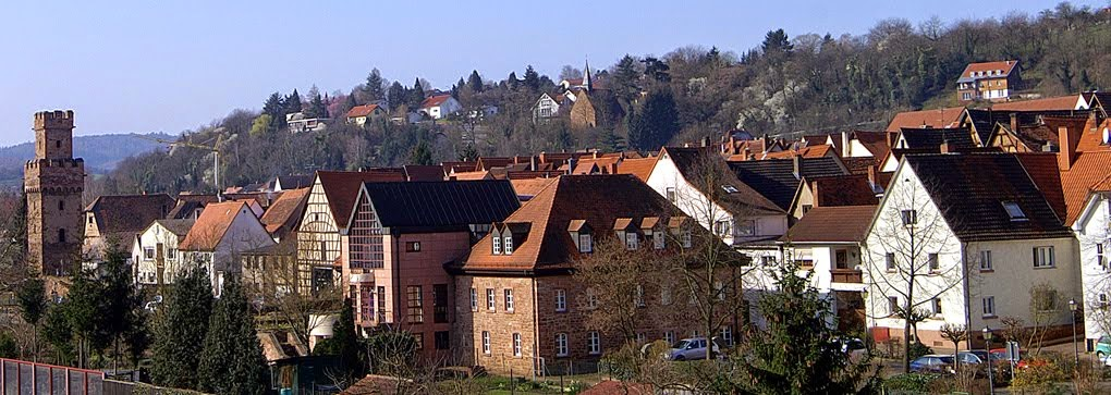 Obernburg erleben