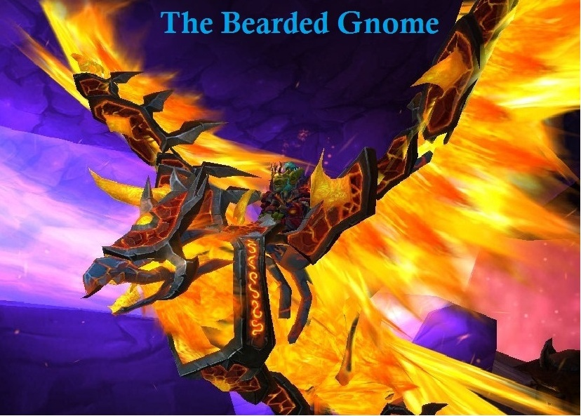 The bearded gnome