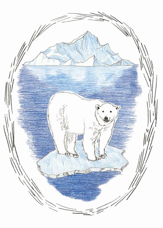 imagenes de animales polares - Fotografías de osos polares Posters en AllPosters es
