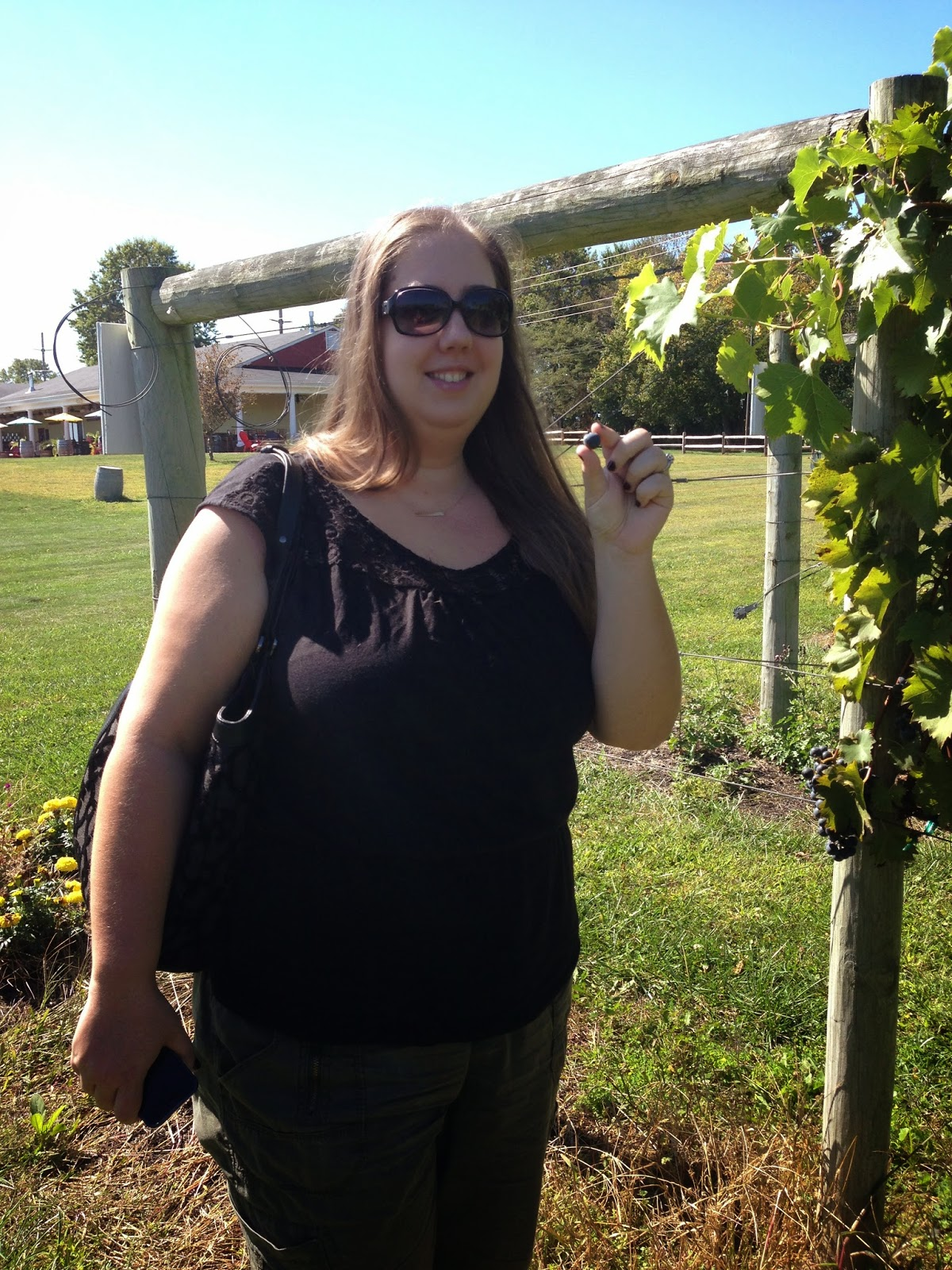 New Jersey Wine Trail - working dog winery