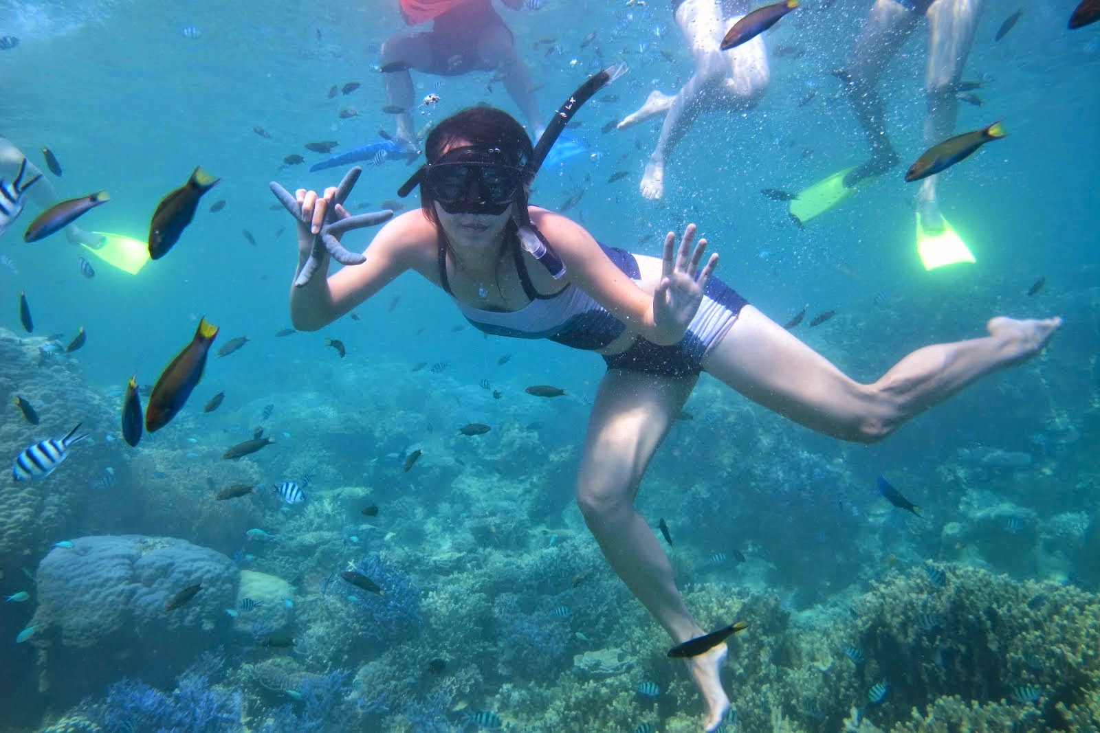 Surga Diving dan Snorkeling di Pulau Wayag Raja Ampat.