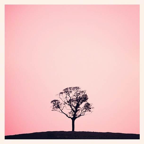 Fotografía | Photography - ©Tony Hammond