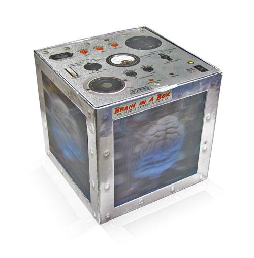 Brain In A Box1