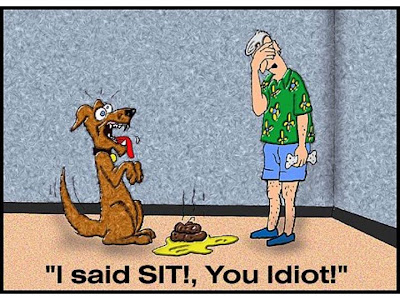 Sit, not shit