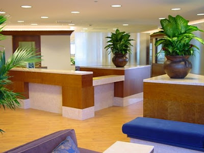 commercial interiors pizzulli pic capital office interiors