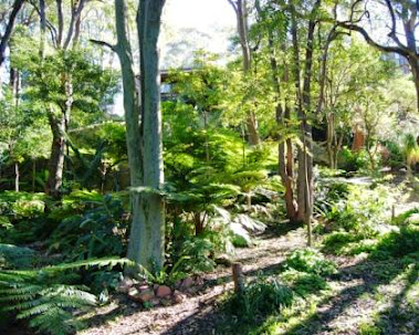 Need Some Garden Ideas Australia?