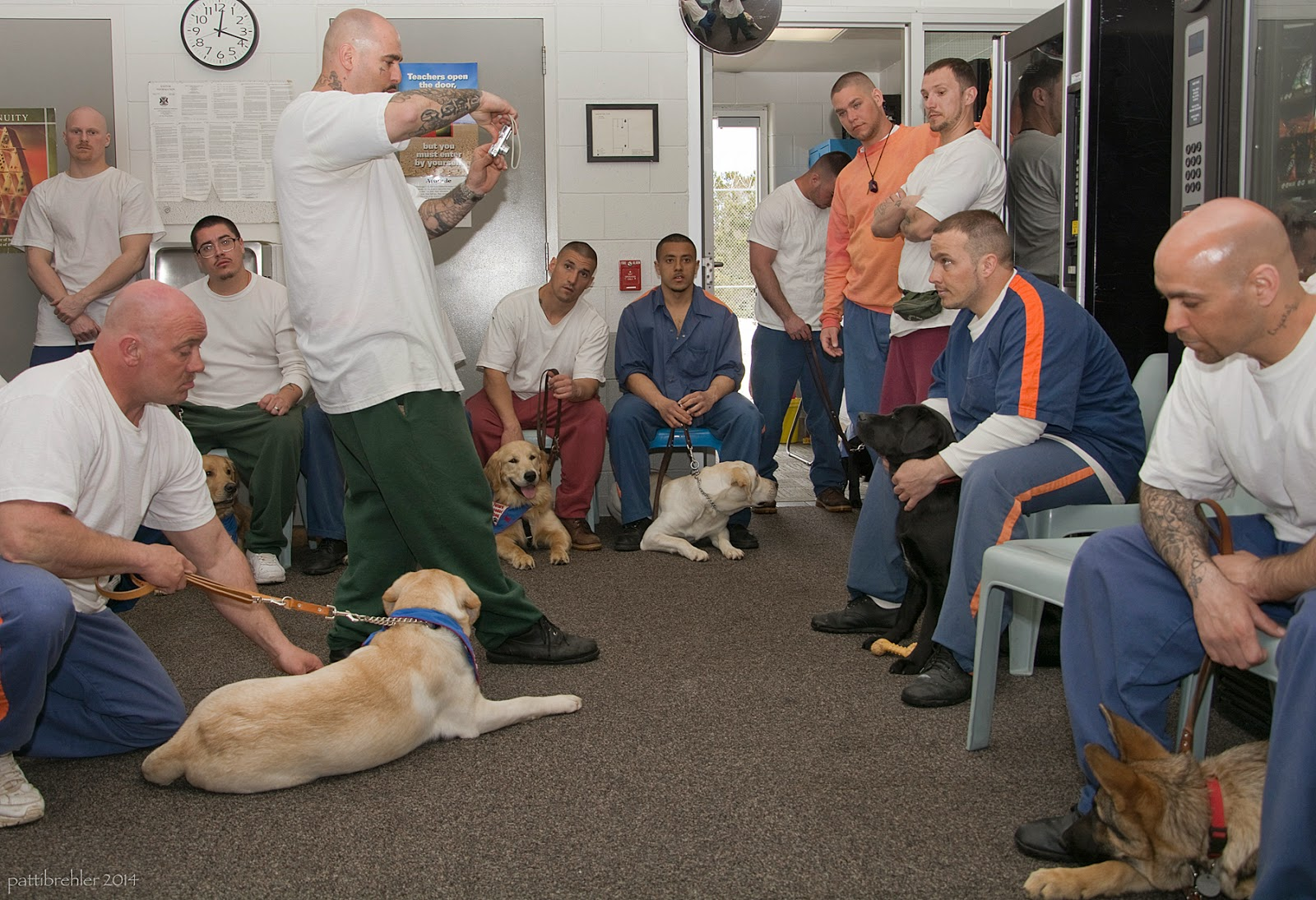 A group of about 11 men circle a small carpeted room, some kneeling on the floor, others standing and the rest sitting in light blue plastic chairs. The man staning in the middle is taking a photo of the man sitting on the right with a black lab sitting between his knees. There are yellow labs, golden retrievers and a german shepherd puppy with the men.