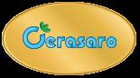 Collaborazione Cerasaro